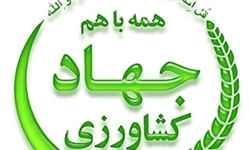 پرداخت غرامت به دیمیکاران استان زنجان