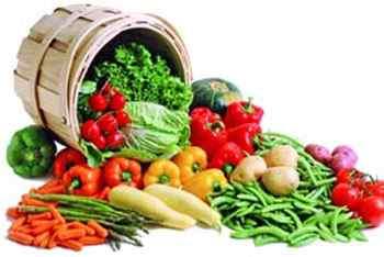 توصیه های تغذیه ای طب اسلامی برای فصل پاییز