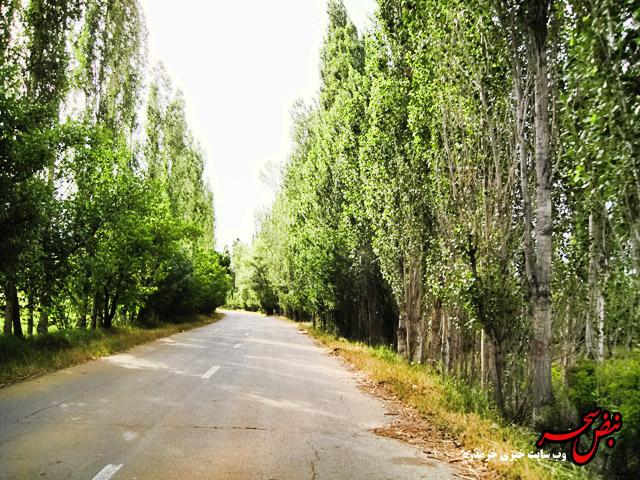 جاده توریستی داسداران  بهترین گزینه برای مسافرت در فصل گرما/ خرم دره بی نظیر در طبیعت بکر+ تصاویر