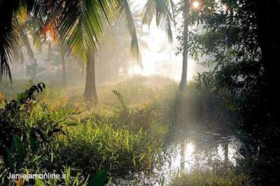 ده عکس برتر از مناظر طبیعت