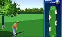 استاد گلف – Golf Instructor