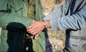شکارچی پرنده در خرمدره به ارایه خدمات عمومی رایگان محکوم شد